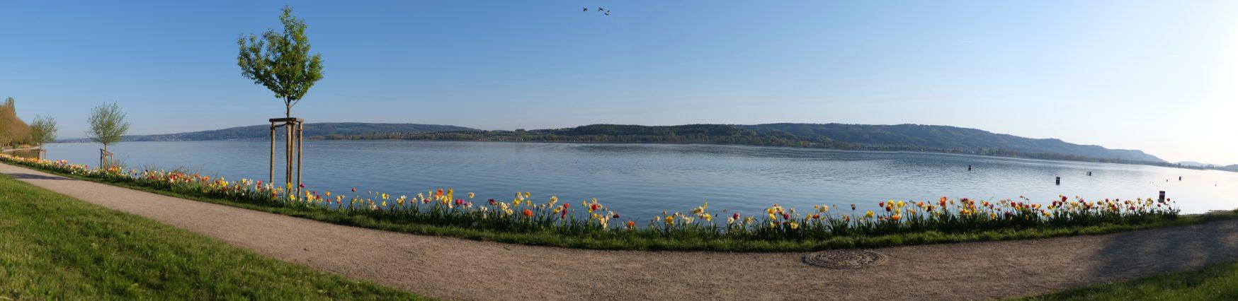 Radolfzell Panorama
